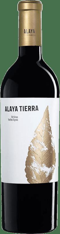 25,95 € Envío gratis | Vino tinto Atalaya Alaya Tierra Crianza D.O. Almansa Castilla la Mancha España Garnacha Tintorera Botella 75 cl