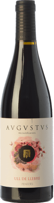 15,95 € Free Shipping | Red wine Augustus Microvinificacions Ull de Llebre Joven D.O. Penedès Catalonia Spain Tempranillo Bottle 75 cl