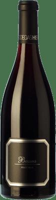 24,95 € Envío gratis | Vino tinto Hispano-Suizas Bassus Joven D.O. Utiel-Requena Comunidad Valenciana España Pinot Negro Botella 75 cl