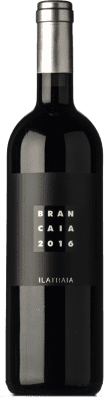 48,95 € Kostenloser Versand   Rotwein Brancaia Ilatraia I.G.T. Toscana Toskana Italien Cabernet Sauvignon, Cabernet Franc, Petit Verdot Flasche 75 cl