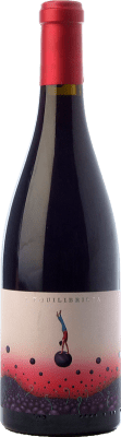 21,95 € Free Shipping | Red wine Ca N'Estruc L'Equilibrista Garnatxa Crianza D.O. Catalunya Catalonia Spain Grenache Bottle 75 cl