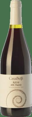 14,95 € Free Shipping | Red wine Casa Belfi Rosso Anfora I.G.T. Delle Venezie Friuli-Venezia Giulia Italy Cabernet Sauvignon, Raboso Bottle 75 cl