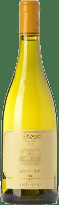 65,95 € Free Shipping | White wine Castello della Sala Cervaro della Sala I.G.T. Umbria Umbria Italy Chardonnay, Grechetto Bottle 75 cl