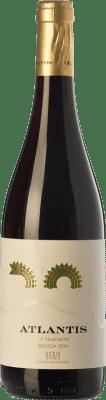 6,95 € Envoi gratuit   Vin rouge Castillo de Maetierra Atlantis Joven D.O. Bierzo Castille et Leon Espagne Mencía Bouteille 75 cl