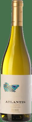 6,95 € Free Shipping | White wine Castillo de Maetierra Atlantis D.O. Rías Baixas Galicia Spain Albariño Bottle 75 cl