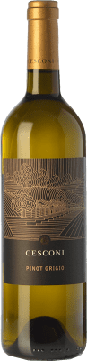 22,95 € Free Shipping | White wine Cesconi Selezione Et. Vigneto I.G.T. Vigneti delle Dolomiti Trentino Italy Pinot Grey Bottle 75 cl