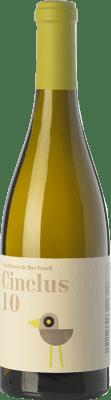 12,95 € Free Shipping | White wine DG Cinclus Crianza 2010 D.O. Penedès Catalonia Spain Albariño, Incroccio Manzoni Bottle 75 cl