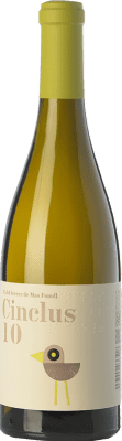 12,95 € Free Shipping | White wine DG Cinclus Crianza D.O. Penedès Catalonia Spain Albariño, Incroccio Manzoni Bottle 75 cl