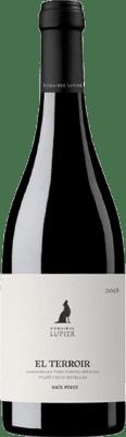 22,95 € Free Shipping | Red wine Lupier El Terroir Crianza D.O. Navarra Navarre Spain Grenache Bottle 75 cl