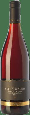 19,95 € Free Shipping | Red wine Elena Walch Pinot Nero D.O.C. Alto Adige Trentino-Alto Adige Italy Pinot Black Bottle 75 cl