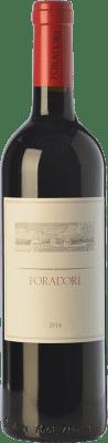 23,95 € Kostenloser Versand | Rotwein Foradori I.G.T. Vigneti delle Dolomiti Trentino Italien Teroldego Flasche 75 cl