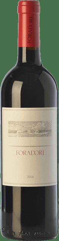 23,95 € Envío gratis | Vino tinto Foradori I.G.T. Vigneti delle Dolomiti Trentino Italia Teroldego Botella 75 cl