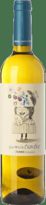 7,95 € Envío gratis | Vino blanco Ferré i Catasús Somiatruites D.O. Penedès Cataluña España Xarel·lo, Chardonnay, Sauvignon Blanca, Moscatel Grano Menudo, Chenin Blanco Botella 75 cl