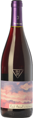 23,95 € Free Shipping | Red wine Jermann Red Angel I.G.T. Friuli-Venezia Giulia Friuli-Venezia Giulia Italy Pinot Black Bottle 75 cl