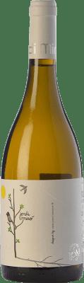 8,95 € Envoi gratuit   Vin blanc Jordi Miró Garnacha Crianza D.O. Terra Alta Catalogne Espagne Grenache Blanc Bouteille 75 cl