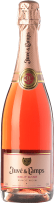 11,95 € Free Shipping | Rosé sparkling Juvé y Camps Rosé Brut Joven D.O. Cava Catalonia Spain Pinot Black Bottle 75 cl | Thousands of wine lovers trust us to get the best price guarantee, free shipping always and hassle-free shopping and returns.