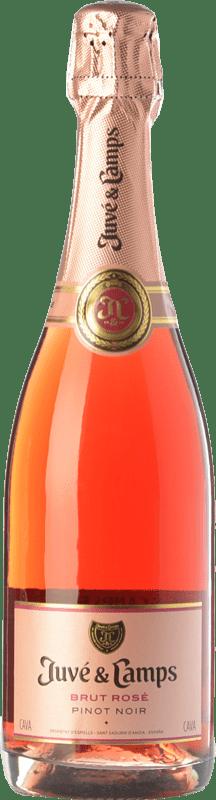 14,95 € Envoi gratuit | Rosé moussant Juvé y Camps Rosé Brut Joven D.O. Cava Catalogne Espagne Pinot Noir Bouteille 75 cl