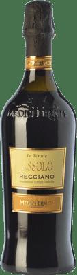 9,95 € Free Shipping | Red wine Medici Ermete Assolo D.O.C. Reggiano Emilia-Romagna Italy Lambrusco Salamino, Ancellotta Bottle 75 cl