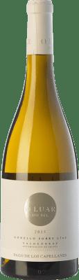 19,95 € Kostenloser Versand | Weißwein Pago de los Capellanes O Luar Do Sil D.O. Valdeorras Galizien Spanien Godello Flasche 75 cl