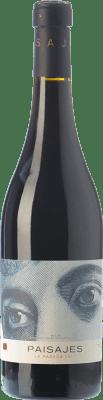 39,95 € Envío gratis | Vino tinto Paisajes La Pasada Reserva D.O.Ca. Rioja La Rioja España Tempranillo Botella Mágnum 1,5 L