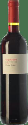 8,95 € Free Shipping | Red wine Piñol Raig de Raïm Negre Joven D.O. Terra Alta Catalonia Spain Merlot, Syrah, Grenache, Carignan Bottle 75 cl
