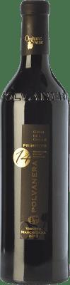 17,95 € Free Shipping | Red wine Polvanera Primitivo 14 D.O.C. Gioia del Colle Puglia Italy Primitivo Bottle 75 cl