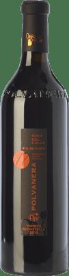 34,95 € Free Shipping | Red wine Polvanera Primitivo 17 D.O.C. Gioia del Colle Puglia Italy Primitivo Bottle 75 cl