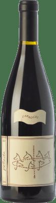 62,95 € Kostenloser Versand | Rotwein Quinta da Pellada Carrocel Crianza 2006 I.G. Dão Dão Portugal Touriga Nacional Flasche 75 cl