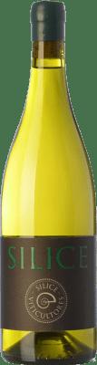 23,95 € Envío gratis | Vino blanco Sílice España Godello, Palomino Fino, Treixadura, Doña Blanca Botella 75 cl
