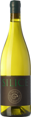 26,95 € Free Shipping | White wine Sílice Spain Godello, Palomino Fino, Treixadura, Doña Blanca Bottle 75 cl