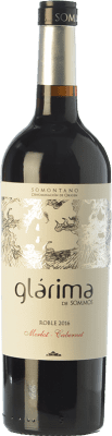 6,95 € Envío gratis | Vino tinto Sommos Glárima Roble D.O. Somontano Aragón España Tempranillo, Merlot, Cabernet Sauvignon Botella 75 cl