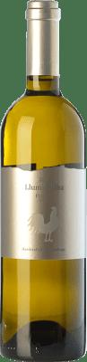 14,95 € Envío gratis | Vino blanco Trossos del Priorat Llum d'Alba D.O.Ca. Priorat Cataluña España Garnacha Blanca, Viognier, Macabeo Botella 75 cl