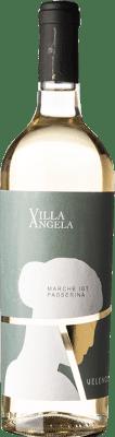 11,95 € Free Shipping   White wine Velenosi Villa Angela I.G.T. Marche Marche Italy Passerina Bottle 75 cl