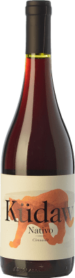 9,95 € Free Shipping | Red wine Vintae Chile Küdaw Nativo Joven I.G. Valle del Itata Itata Valley Chile Cinsault Bottle 75 cl