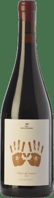 61,95 € Envoi gratuit | Vin rouge Vinyes d'en Gabriel Mans de Samsó Crianza D.O. Montsant Catalogne Espagne Carignan Bouteille 75 cl