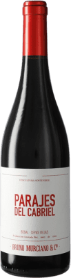 5,95 € Free Shipping | Red wine Murciano & Sampedro Parajes del Cabriel D.O. Utiel-Requena Spain Bobal Bottle 75 cl