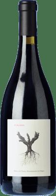 32,95 € Envío gratis | Vino tinto Dominio de Pingus PSI D.O. Ribera del Duero Castilla y León España Tempranillo Botella 75 cl