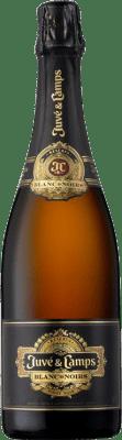 35,95 € Free Shipping   White sparkling Juvé y Camps Blanc de Noirs D.O. Cava Spain Bottle 75 cl