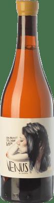 57,95 € Free Shipping | White wine Venus La Universal D.O. Montsant Catalonia Spain Bottle 75 cl