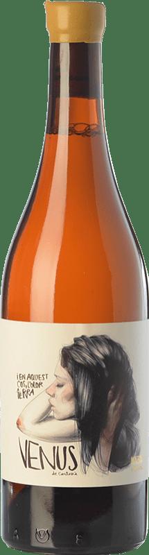 51,95 € Envío gratis | Vino blanco Venus La Universal D.O. Montsant Cataluña España Botella 75 cl