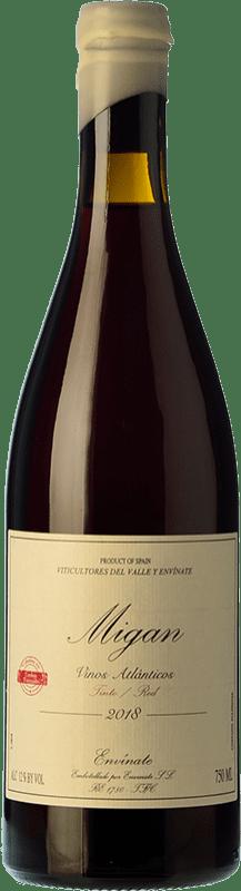 25,95 € Envoi gratuit | Vin rouge Envínate Migan Iles Canaries Espagne Listán Noir, Malvasia Noire, Vijariego Noir Bouteille 75 cl